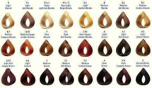 Каталог для краски волос