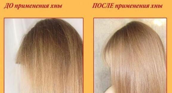 Хна бесцветная для роста волос отзывы